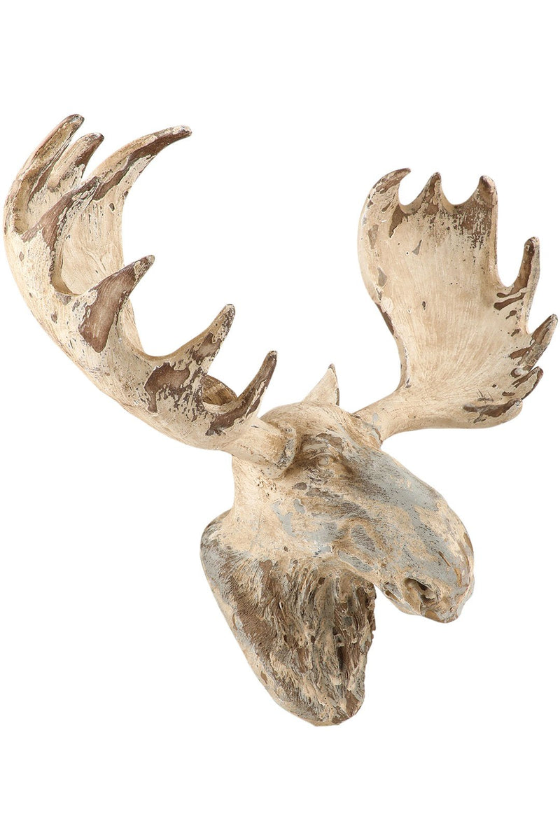 Moose Head Wall Art