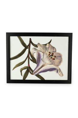 Framed Porcelain Wall Art Panel