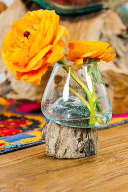 Recycled Glass Vase on Tree Root
