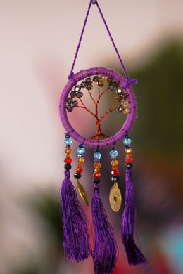 Rainbow Coin Beads Dreamcatcher
