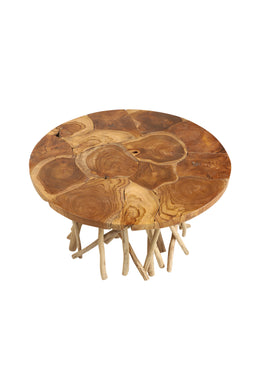 Wild Branch Coffee Table