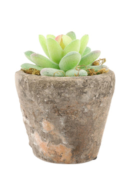 Faux Succulent Plant Pot - Small