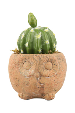 Faux Succulent Plant Pot - Medium