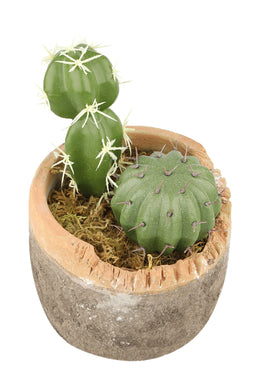 Faux Succulent Plant Pot - Large