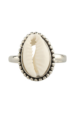 Ring Fine Cowrie Shell