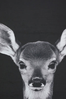 Black & White Bambi Canvas Wall Art