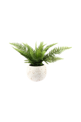 Artificial Boston Fern Terracotta Pot Plant