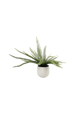 Artificial Boston Fern Ceramic Pot Plant