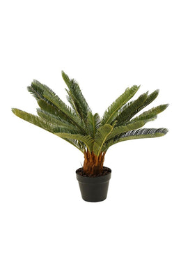 Artificial Cycus Pot Plant