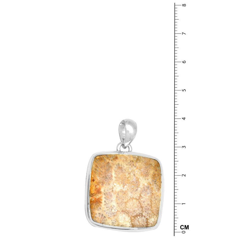 Coral Fossil Pendant