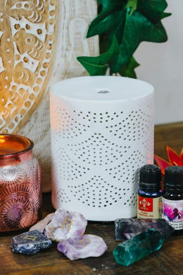 Gingko Earth Oils Electric Diffuser