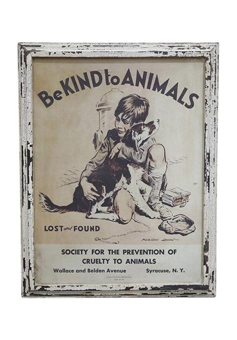Kind To Animals Wall Art