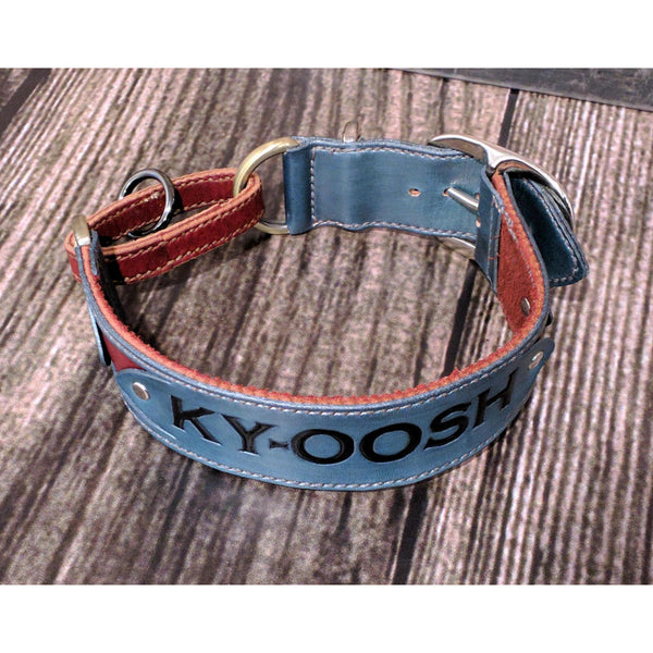 Personalized Dog Collar, Martingale