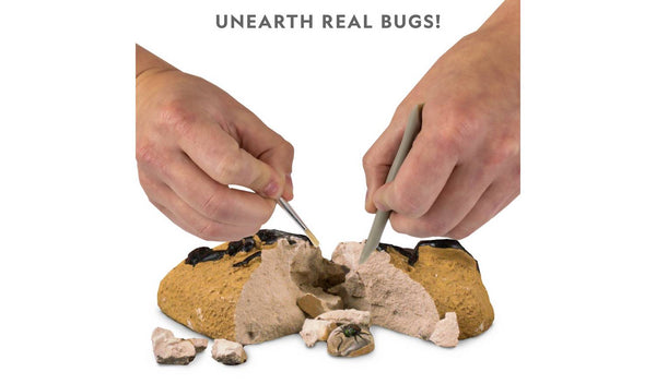 Bug Dig Kit - National Geographic - STEM