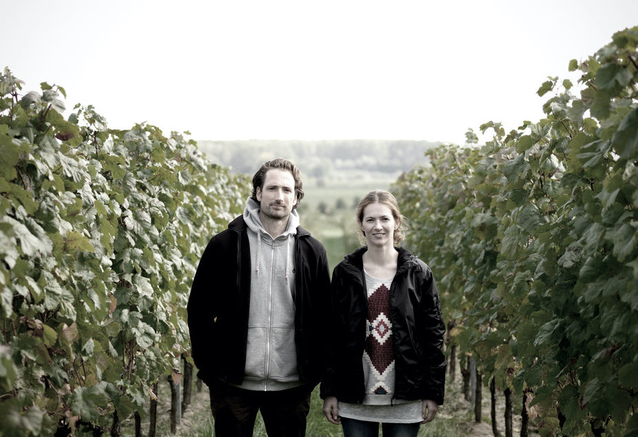 Gut Oggau - making great wines in Austria