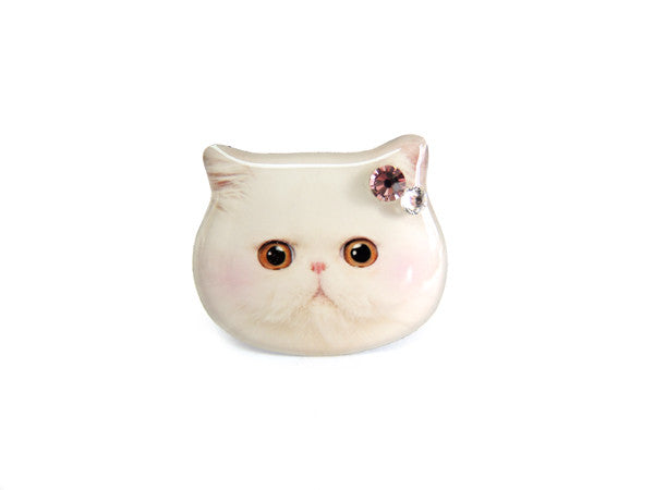 Cute White Persian Cat Kitten with Blush Ring