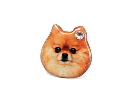 Brown Pomeranian Dog Ring