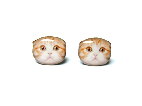 Orange and White Scotland Fold Ear  Cat Kitten Stud Earrings