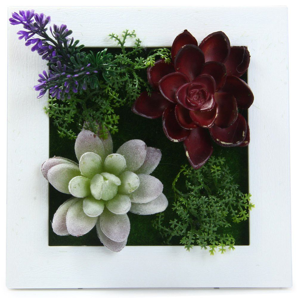 Modern 3d Potted Creative Imitation Succulent Wall Hanger