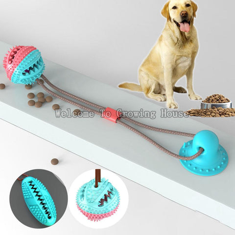 Free ship Dog Toy with Suction Cup Doggy Pull Ball Multifunction Pet Molar Bite Toy Durable Dog Tug Rope Ball Toy - Tugging