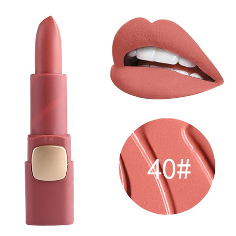 Lipstick Makeup Professional Matte Lipsticks Waterproof Long Lasting Sexy Red Lips Gloss Matte Velvet Lipsticks Beauty Cosmetics