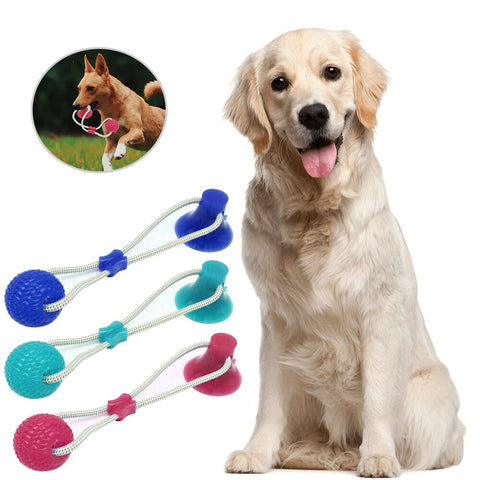 Multifunction Pet Molar Bite Dog Toys Rubber Chew Ball Cleaning Teeth Safe Elasticity Soft Puppy Suction Cup Biting Dog Toy#3