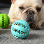 Pet Chewing Toys Aggressive Chewers Pet Molar Bite Toys Multifunction Interactive Pet Ball Toys Ball for Dog