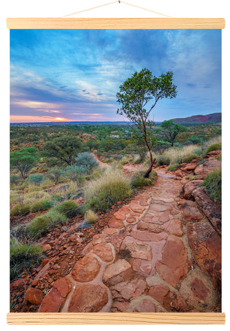 Hike to Kings Canyon, Watarrka National Park, Northern Territory, Australia (566)