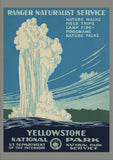 Yellowstone National Park (65)