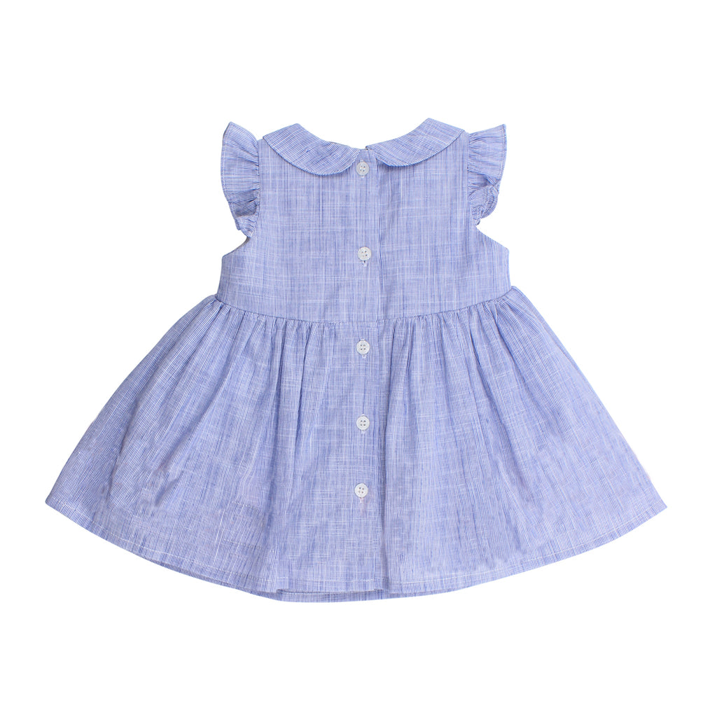 Bebe Evie Dress with Collar in Navy