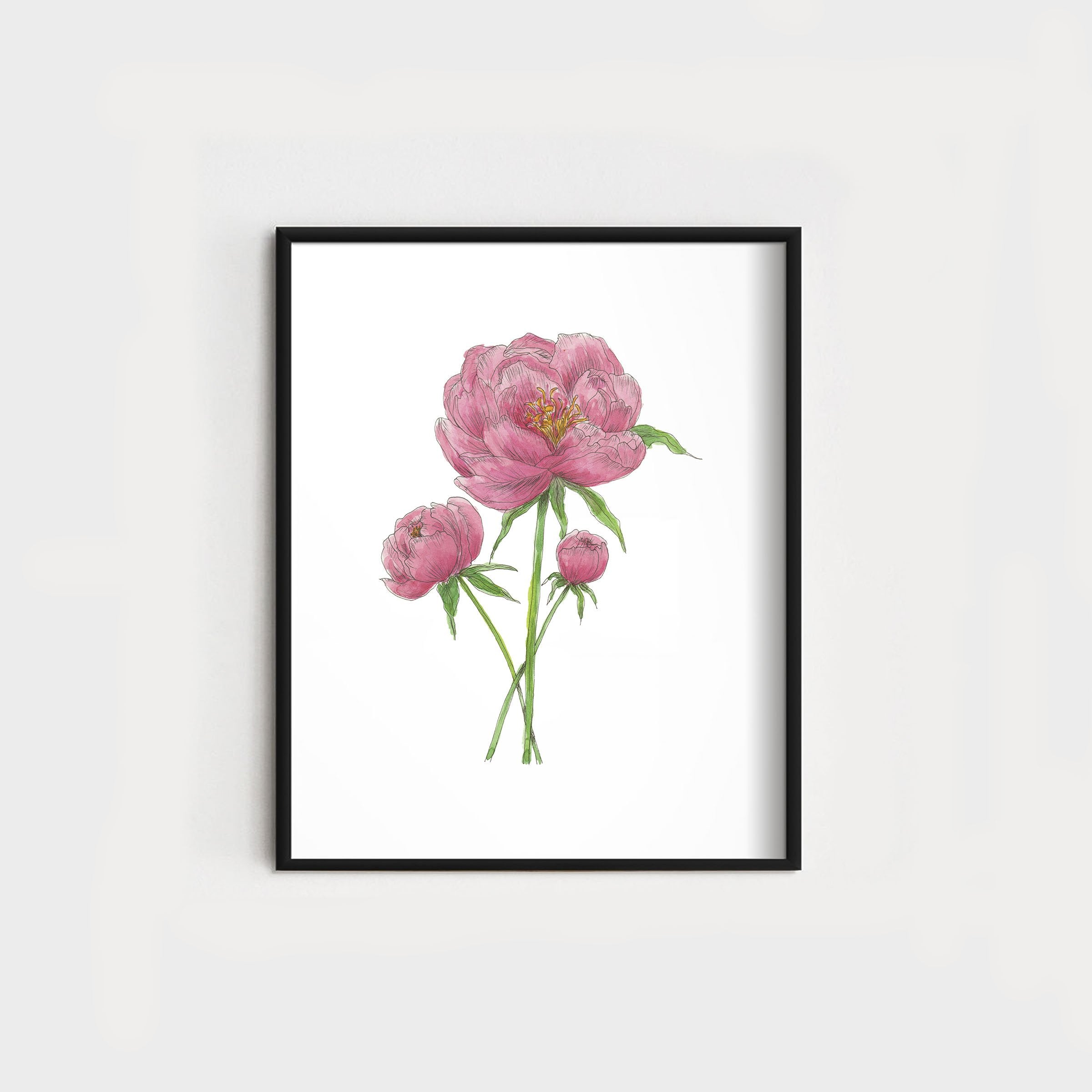 Peonies | Dark Pink WHOLESALE
