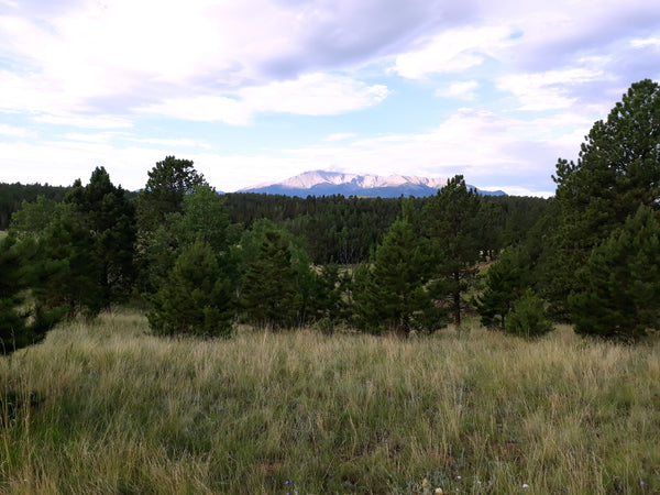 View of Pikes Peak from Rampart Range, Colorado