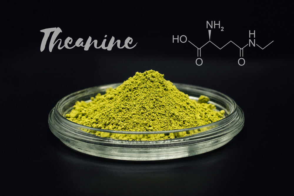 L-Theanine Health Benefits and Side Effects