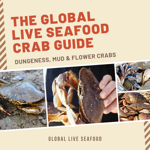 The Global Live Seafood Crab Guide: Dungeness, Mud & Flower Crabs