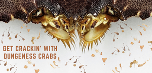 Get Crackin' With Dungeness Crabs