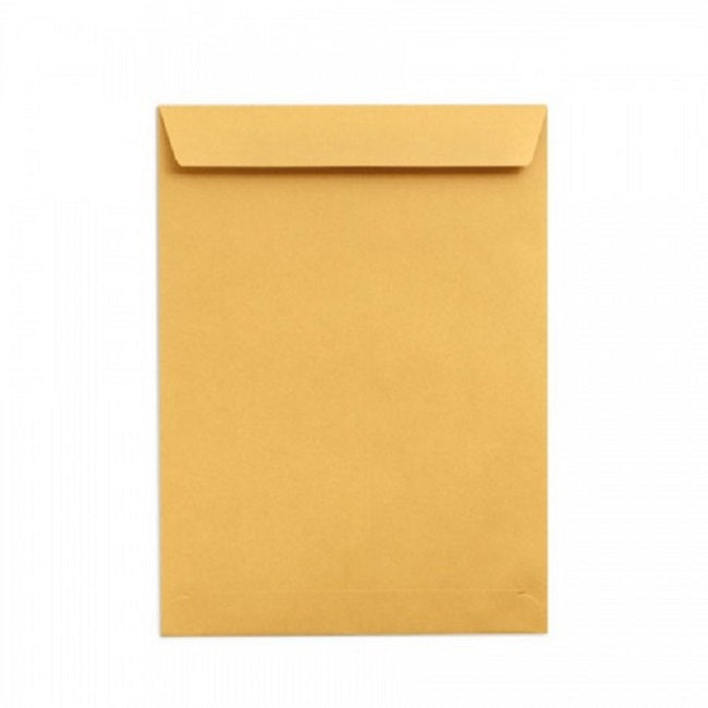 Envelope, 12x10, Letter, BROWN