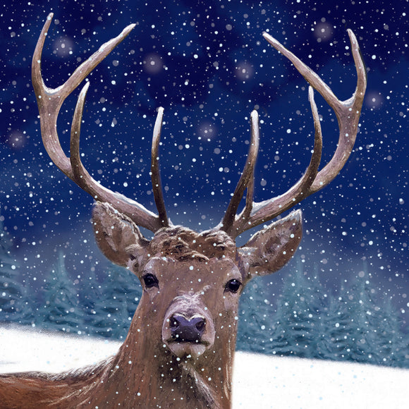 Evening Stag Christmas Cards - Pack of 10