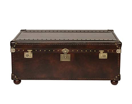 Campania 2 Drawer Buckeye Cocktail Table