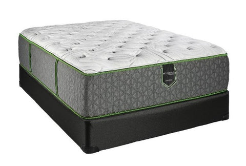 Madrid Top Plush Mattress & Boxspring - Katy Furniture
