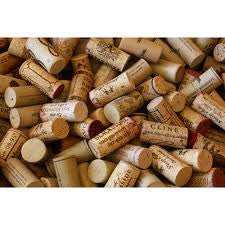Collection Of Corks By Lorraine Shannon