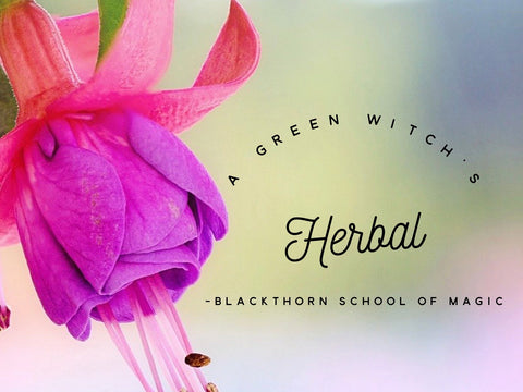 A Green Witch's Herbal