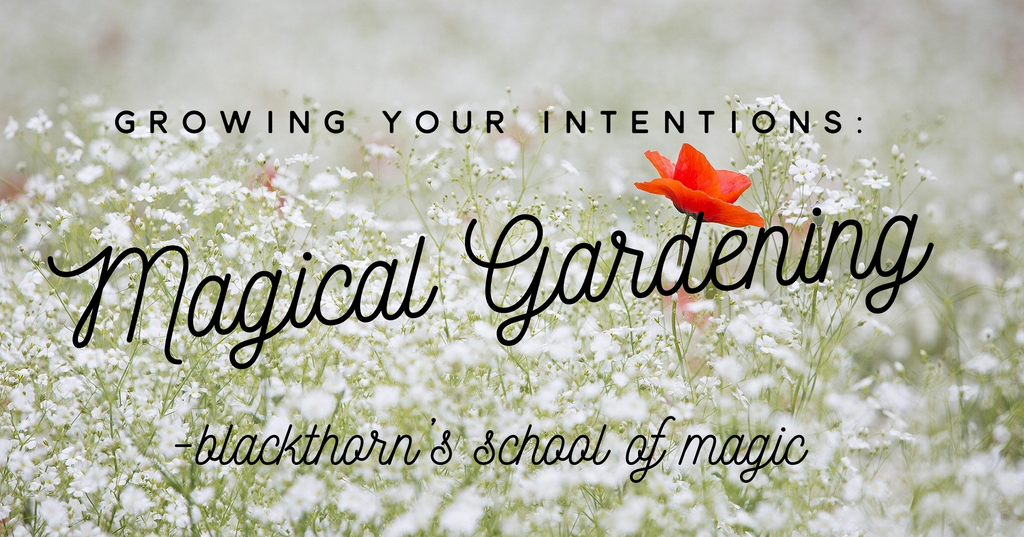 Growing Your Intentions: Magical Gardening and You