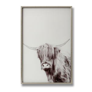 Highland Cow Picture With Silver Frame