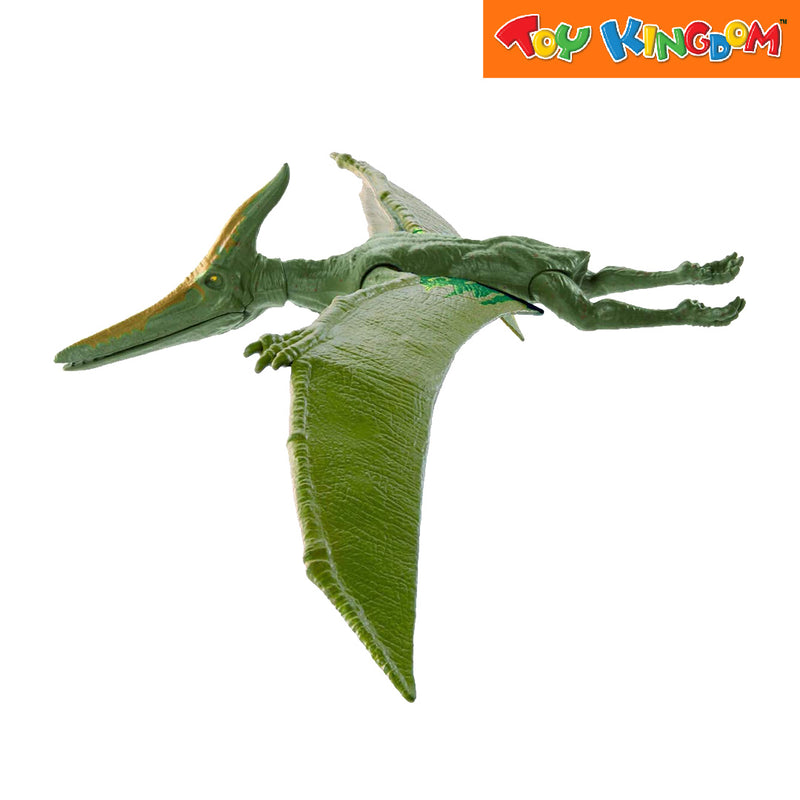 Jurassic World Value 12 Inch Basic Dino -  Pteranodon Toy For Boys