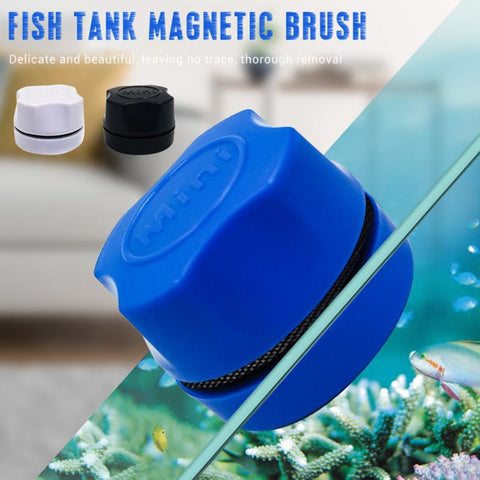 Aquarium Tank Cleaner - household-ideals