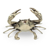 MR PINCHY SEA CRAB MEDIUM