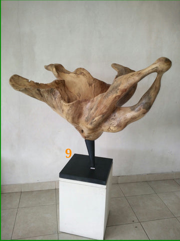 Ficus Wood Flower Stand