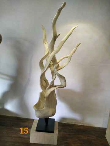 Ficus Wood Squid Stand