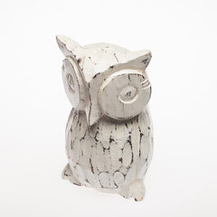 White Wash Owl