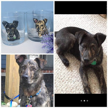 Load image into Gallery viewer, Pet portrait , whiskey glasses, whiskey tumblers, for dog lovers, for cat owners , for pet owners, for whiskey lovers